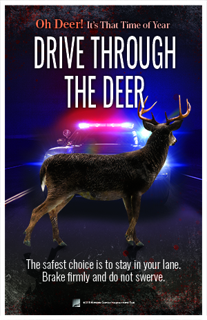 Deer in middle of road in front of a law enforcement vehicle. Text: Drive through the deer