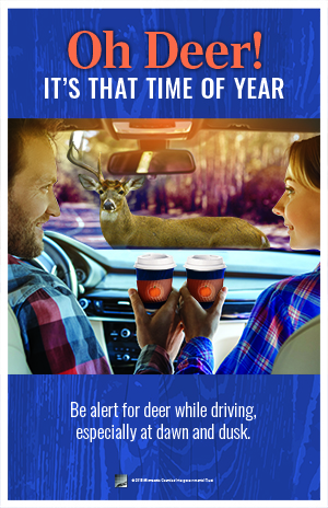 Man and woman look at each other in a car holding coffee cups while a deer is in the path of the car. Text: Oh deer! It's that time of year. Be alert for deer while driving.