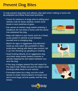Prevent dog bites: text gives tips and images illustrate signs of presence of dogs on premises, aggressive dog behavior and using a soft object as target or dog to bite