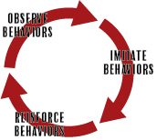 Three arrows create circle showing feedback loop of observe behaviors, imitate behaviors and reinforce behaviors